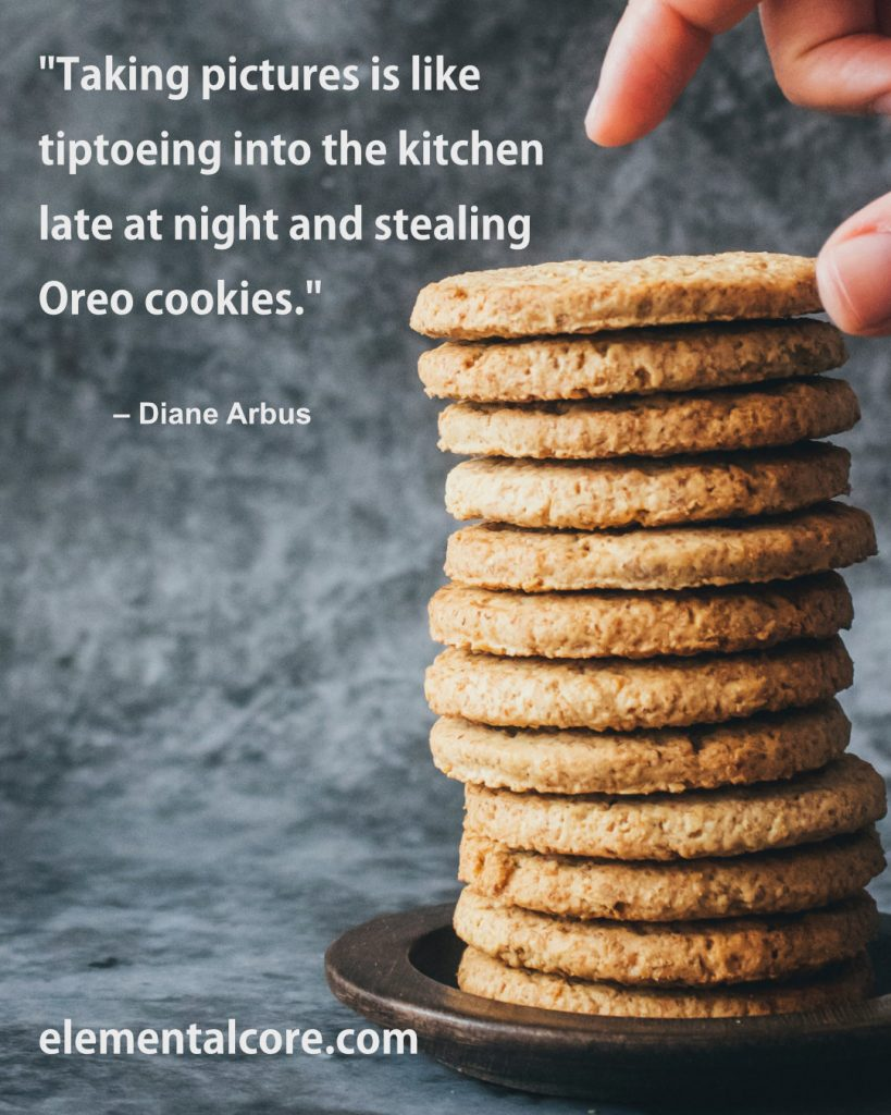 """""""Taking pictures is like tiptoeing into the kitchen late at night and stealing Oreo cookies."""" - Diane Arbus"""